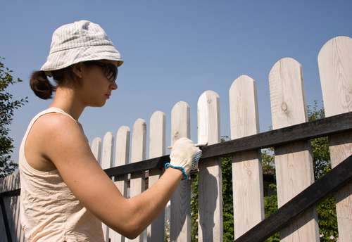 paint outdoor fence a dark, bold color